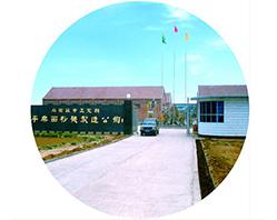 Em 1991, a Pingle Flour Mill Repair Factory, antecessor do Grupo de Pingle foi fundada no Condado de Zhengding.