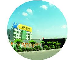 Em 2003, o Grupo de Hebei Pingle foi estabelecido.