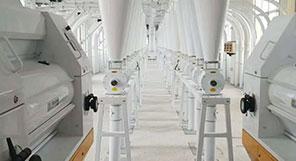 China 350TPD Planta de moagem de trigo