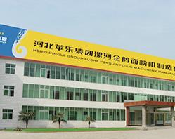 Em 2004, a Pingle adquiriu totalmente a Henan Luohe Penguin Flour Machinery Manufacturing Co., Ltd.